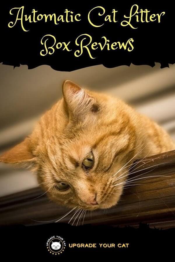 Automatic Cat Litter Box Reviews