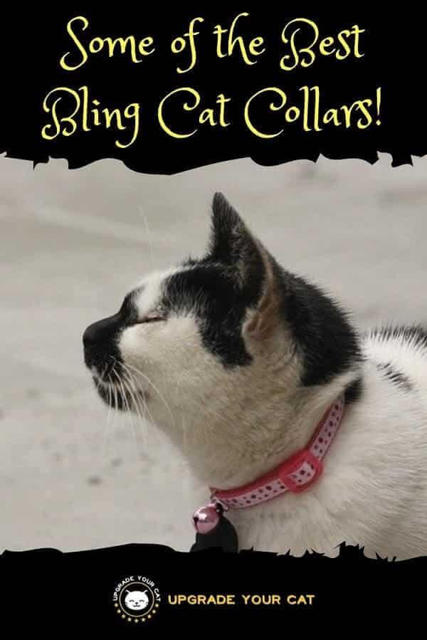 Bling Cat Collars