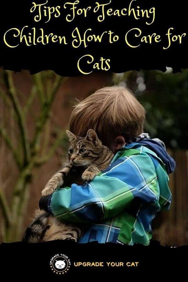 Teaching Children to Care for Cats
