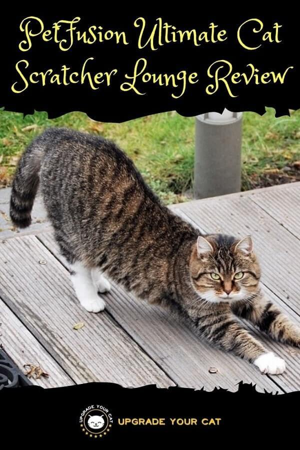 PetFusion Ultimate Cat Scratcher Lounge Review