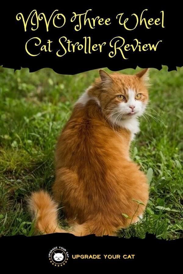 VIVO Three Wheel Cat Stroller Review