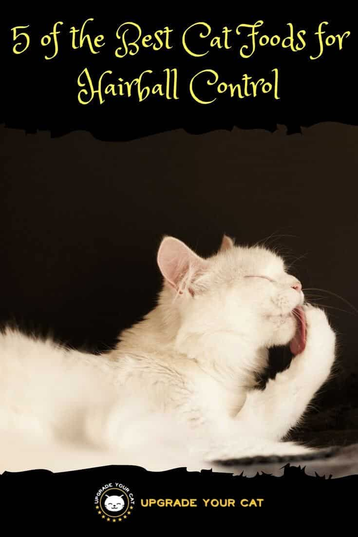 Best Cat Food for Hairball Control
