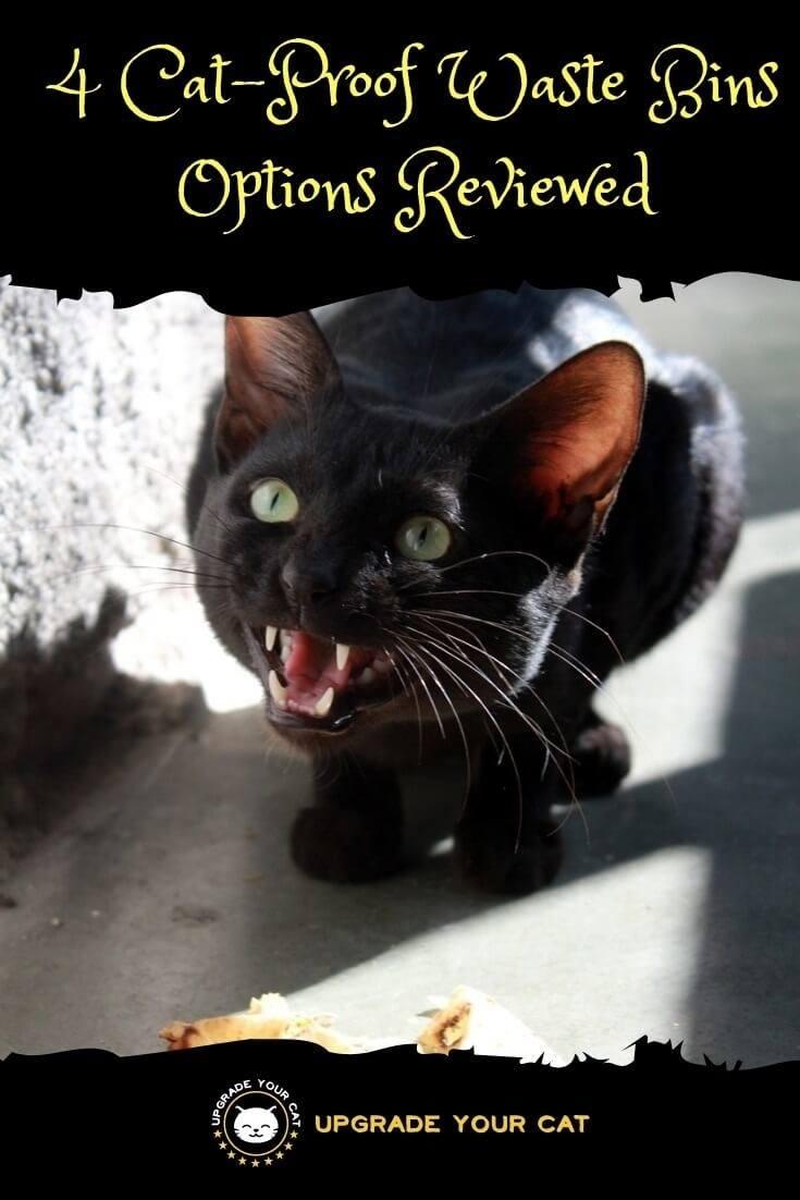 Cat Proof Waste Bin