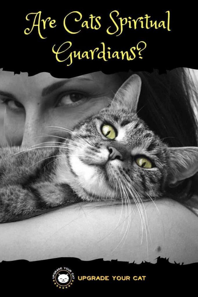 Are Cats Spiritual Guardians