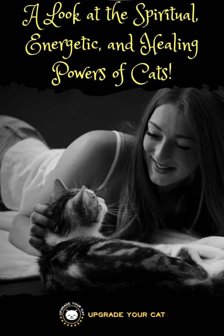 The Power of Cats Spiritual, Energetic, and Healing